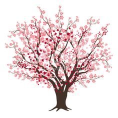 Cherry Tree clipart sakura Tree Apricot Apricot svg drawings
