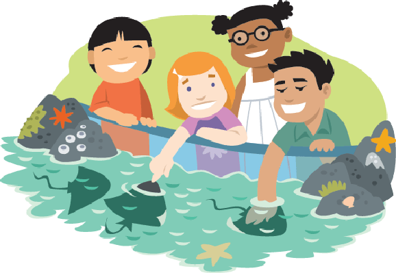 Aquarium clipart Kids Kids Aquarium Clipart Image