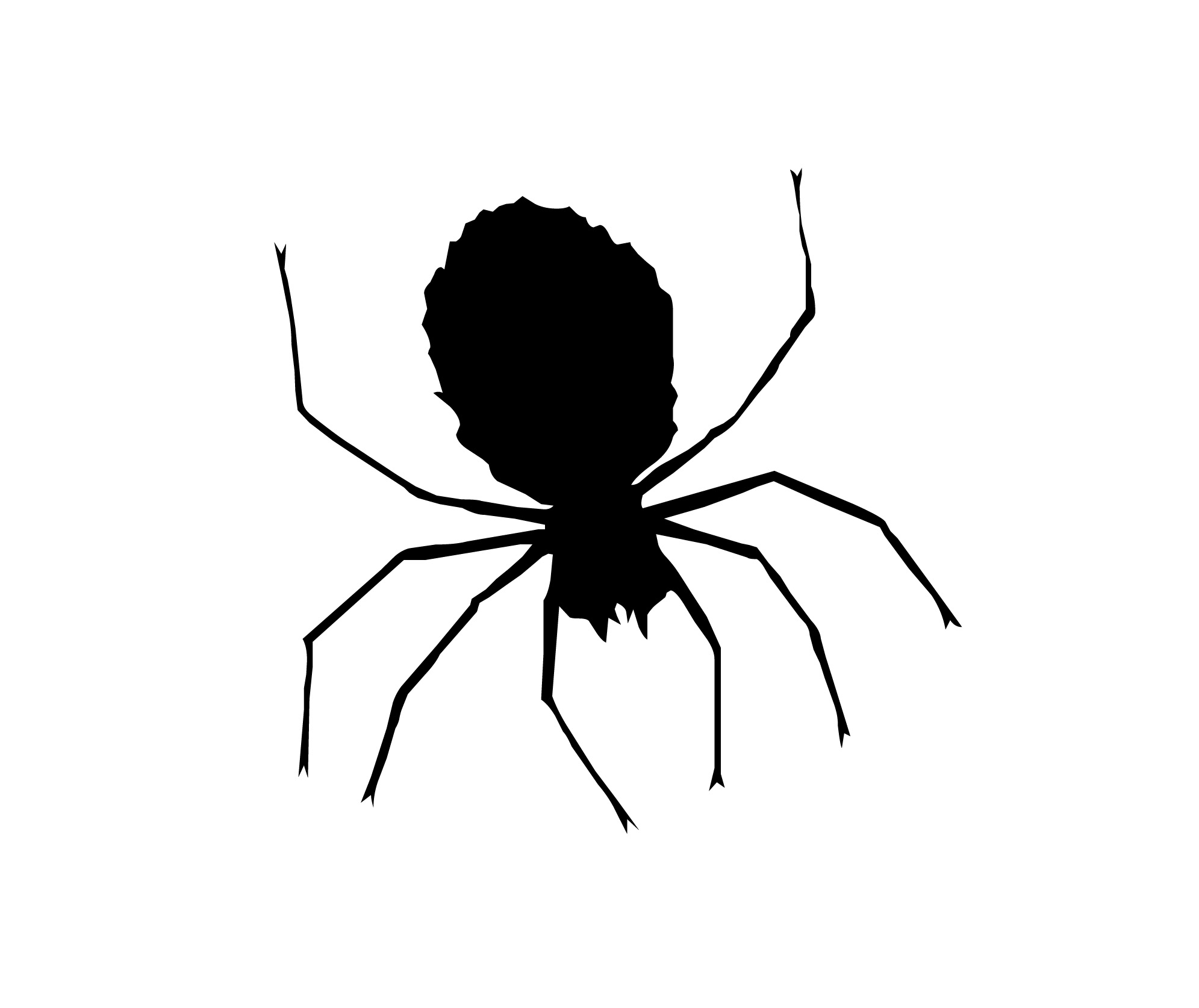Drawn spider silhouette Spider%20clipart White And Images Black