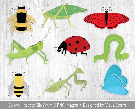 Arachnid clipart colorful Clipart digital This Arachnid file