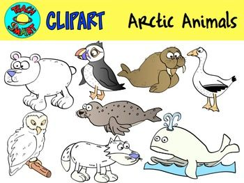 Arctic clipart adaptation Is a live set the