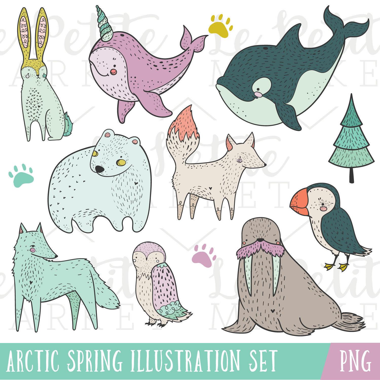 Arctic clipart walrus Winter Arctic digital Cute This