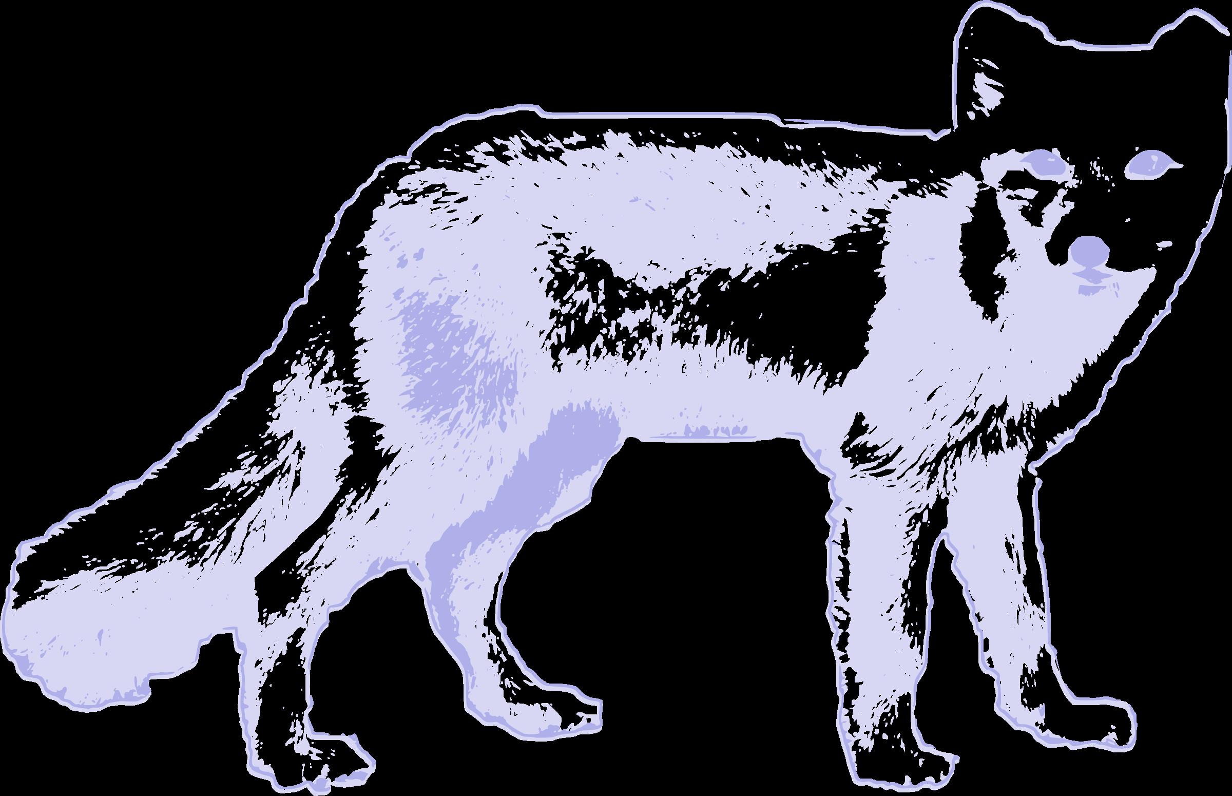 White Wolf clipart arctic fox Arctic fox Arctic Clipart fox