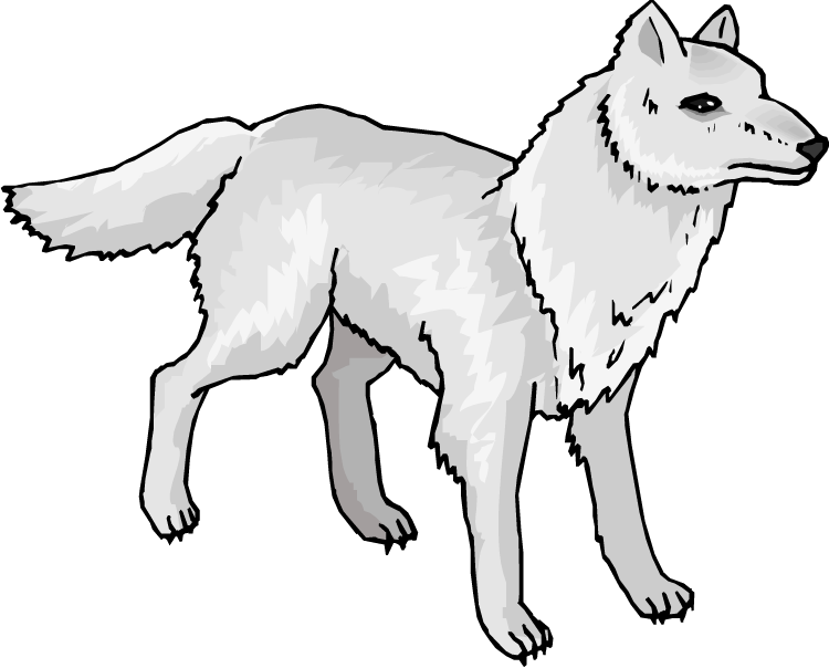 Arctic Wolf clipart #5 clipart Arctic Download Fox