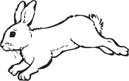Arctic Hare clipart Clipart photo#2 Arctic Hare Clipart