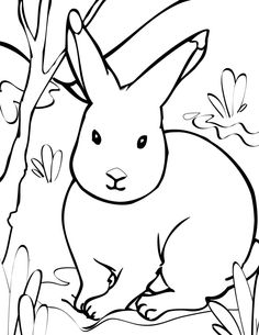 Arctic Hare clipart Stock arctic 3  Hare