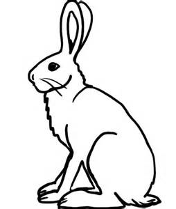 Arctic Hare clipart Hare coloring Arctic coloring #17