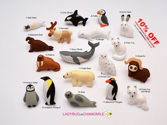 Arctic Hare clipart arctic seal Ideas photos YOUR OF Pinterest
