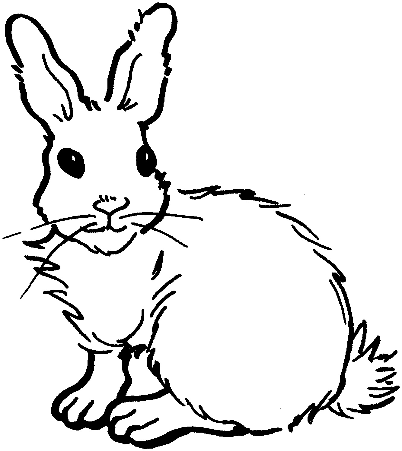 Drawn rabbit hand drawn Rabbit Rabbit Jack Download Jack