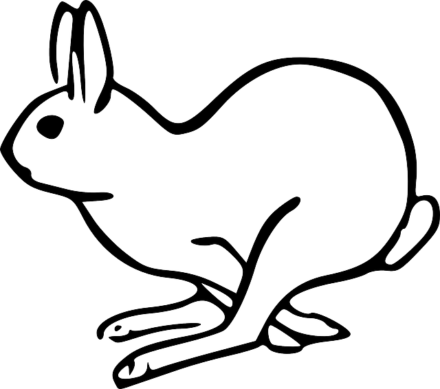 Drawn rabbit fluffy bunny Image Image Free Mammal on