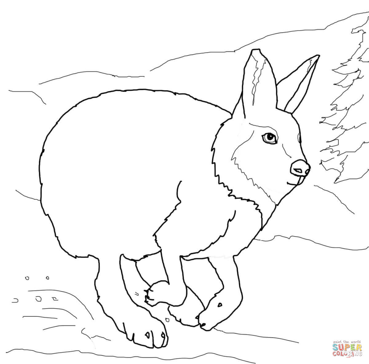 Arctic Hare clipart running hare Running page Hare Free Pages
