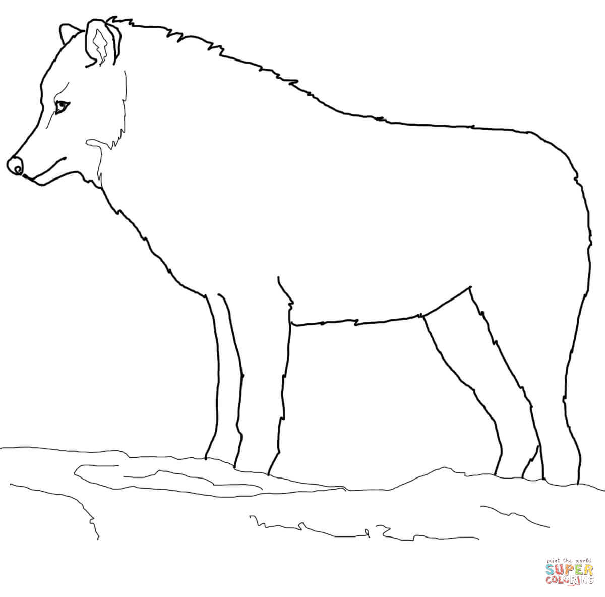 Arctic Wolf clipart Wolf Coloring Printable page Click