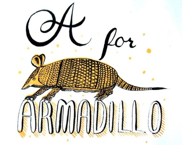 Armadillo clipart envious Stubberfield Armadillo Pinterest images A
