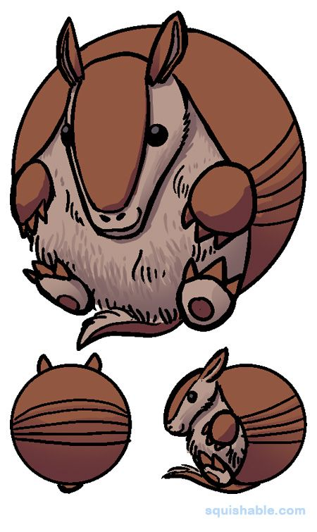 Armadillo clipart odd For on is A best