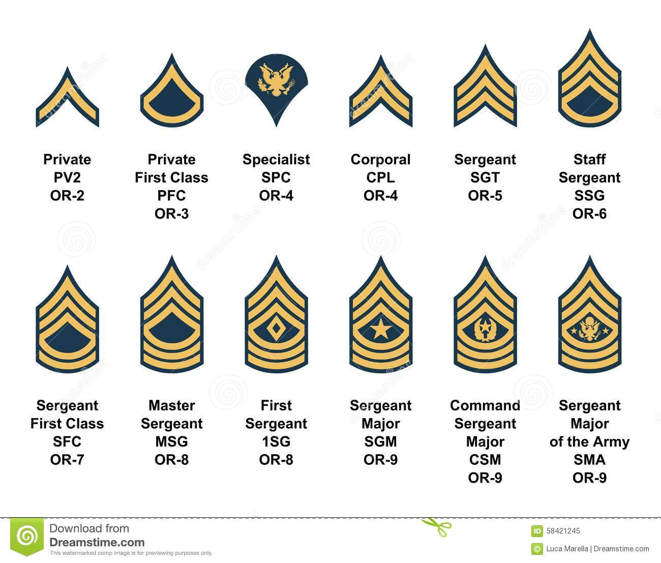 Collection  rank Army insignia
