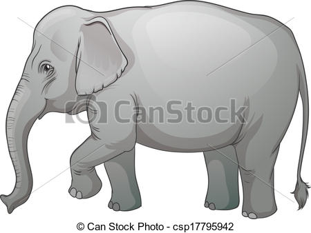 Asian Elephant clipart Csp17795942 an Illustration Vector on