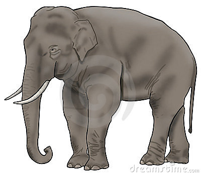 Asian Elephant clipart Illustration Elephant clipart · Asian