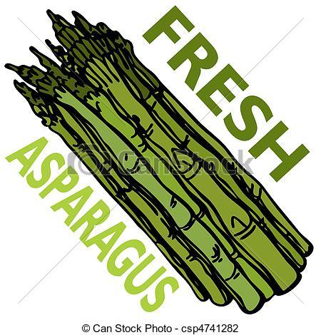Asparagus clipart Art An 1 Asparagus Clipart