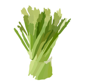 Asparagus clipart Art clip Clip com art