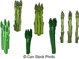 Asparagus clipart Clip spears Illustrations asparagus Vector