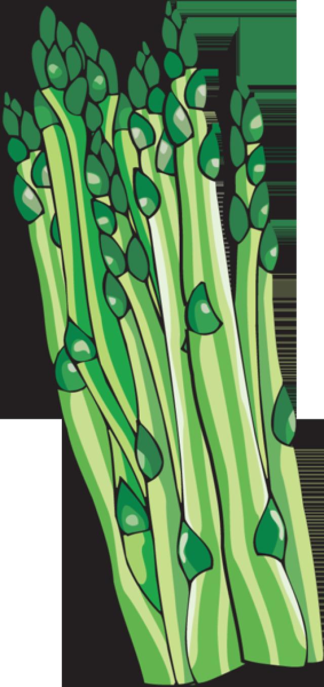 Asparagus clipart animated Asparagus Download Free Clip Art