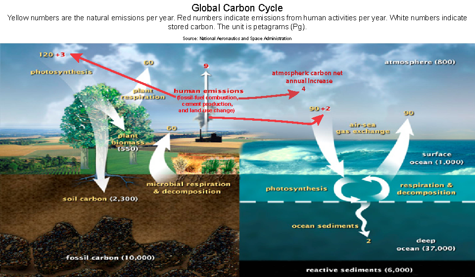 Atmosphere clipart earth Carbon of hydrosphere Carbon such