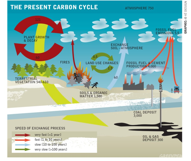 Atmosphere clipart earth Zealand GREENPEACE New emissions zoom