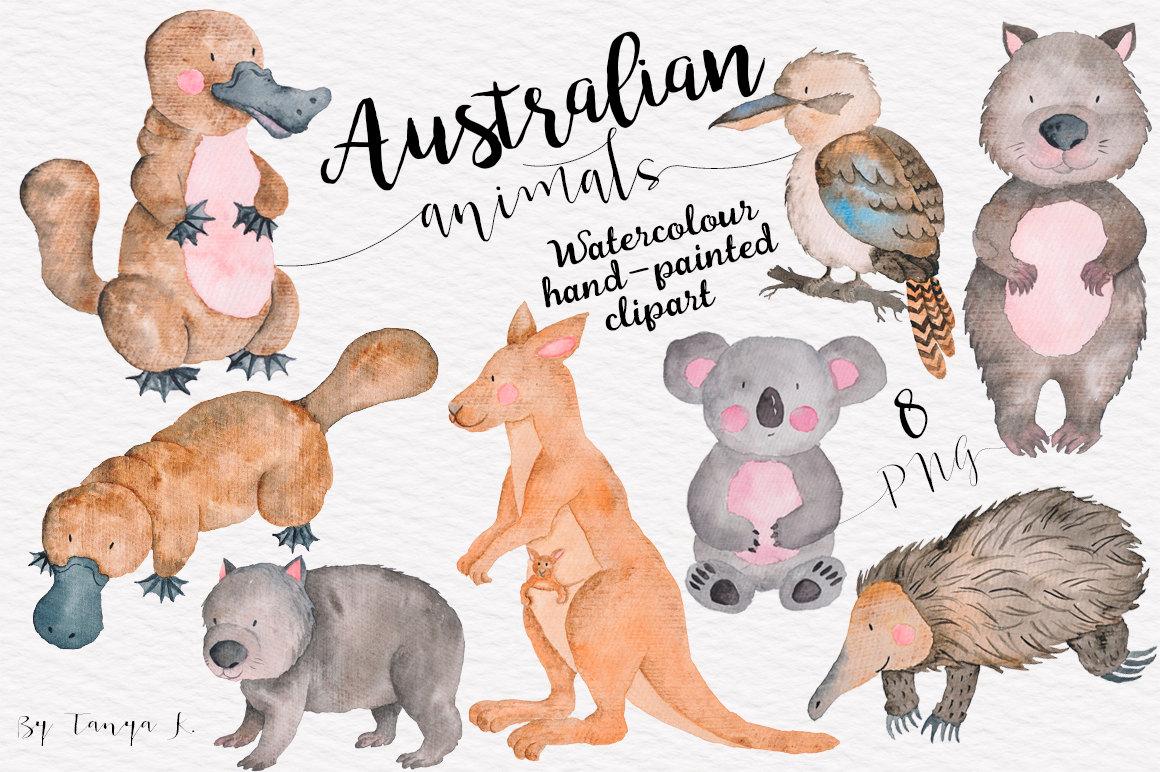 Australia clipart Australian Animal Clipart Animals clipart Animal Best ClipArt