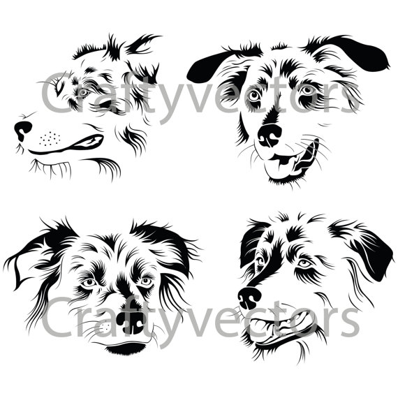 Australian Shepherd clipart Australian Shepherd Head Drawing Svg Download svg Shepherd Download