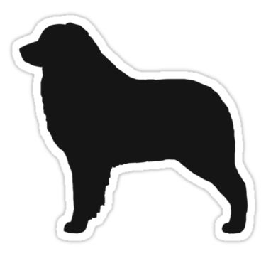 Australian Shepherd clipart Australian Shepherd Head Drawing Pinterest Silhouette Australian on images