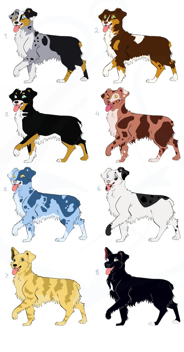 Australian Shepherd clipart Australian Shepherd Head Drawing Adoptables SonyaThough DeviantArt SonyaThough by