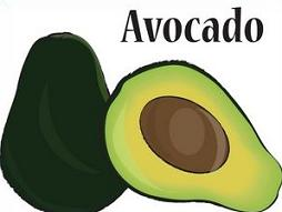 Seed clipart stage Fruit avocado Free Clipart Tags: