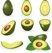 Avocado clipart Clip Art GoGraph Avocado Free