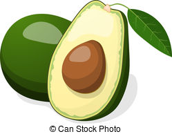 Avocado clipart 624 Illustrations vector Vector free
