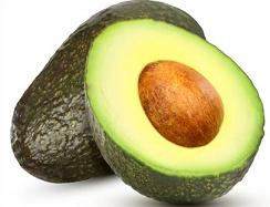 Seed clipart stage Avocado Free Clipart Avocado