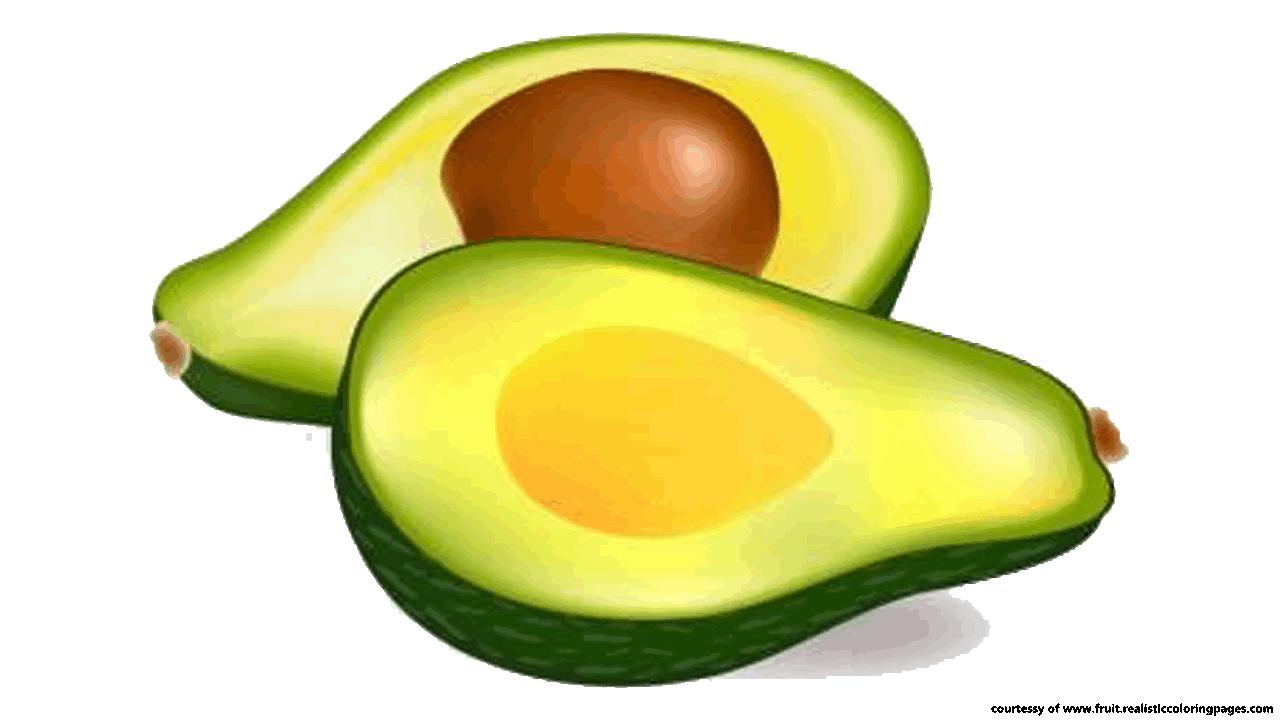 Avocado clipart Fruit Fruit free Great Z