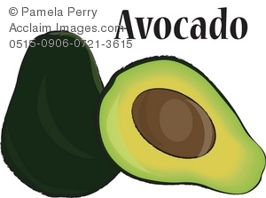 Seeds clipart stage Clip of Art an Avocado