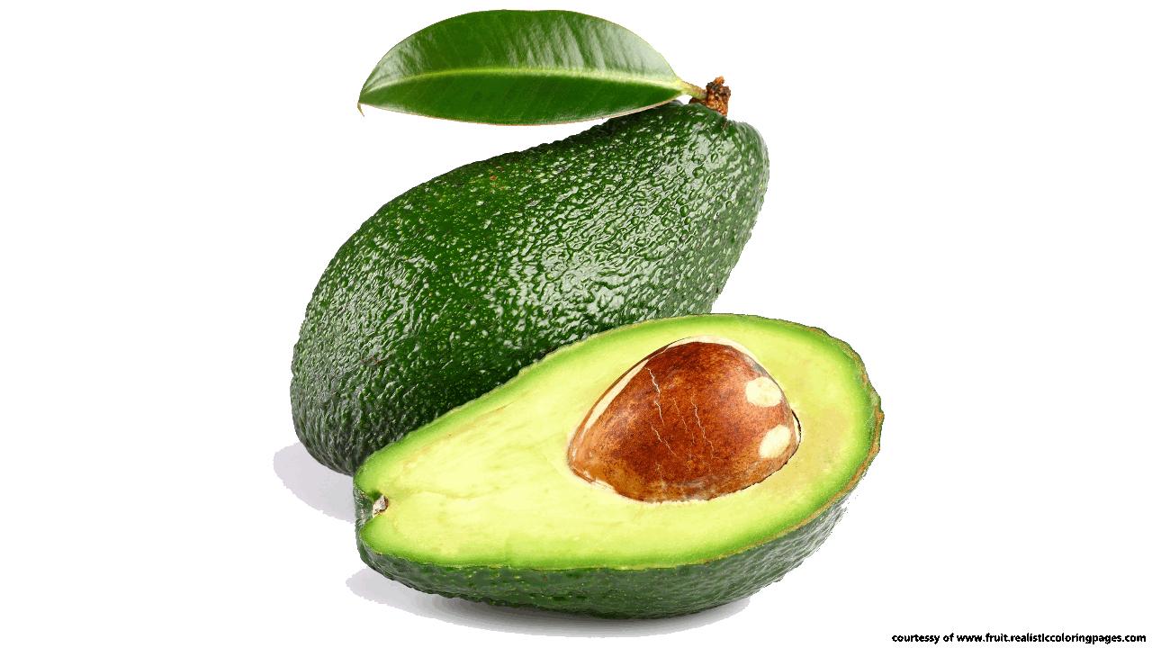 Avocado clipart fruts Clipart clipart avocado Fruit Avocado