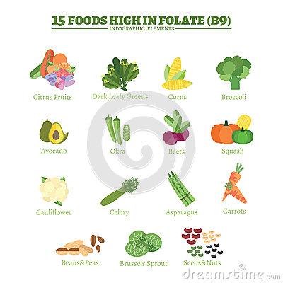 Avocado clipart sayur Market Fresh 06 dalam Vitamin