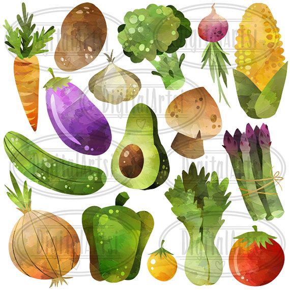 Avocado clipart vegetable Food file Download Watercolor Clipart