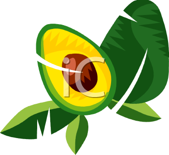 Avocado clipart vegetable Of cut foodclipart clipart Halves