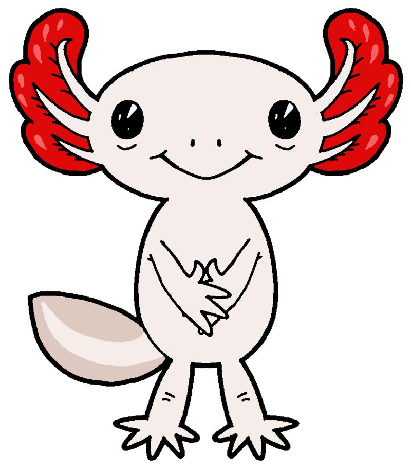 Axolotl clipart pink By Clipart MisterBug Axolotl Axolotl