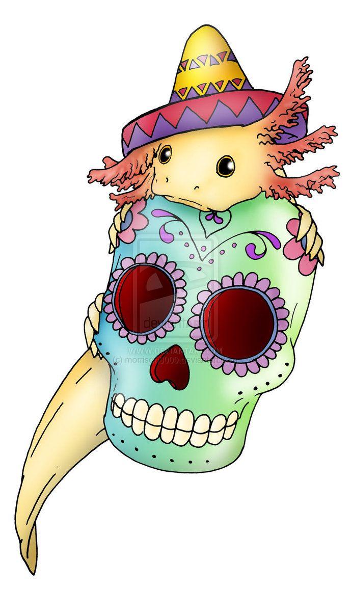 Axolotl clipart pink Axolotl ♡ skull 179 w/