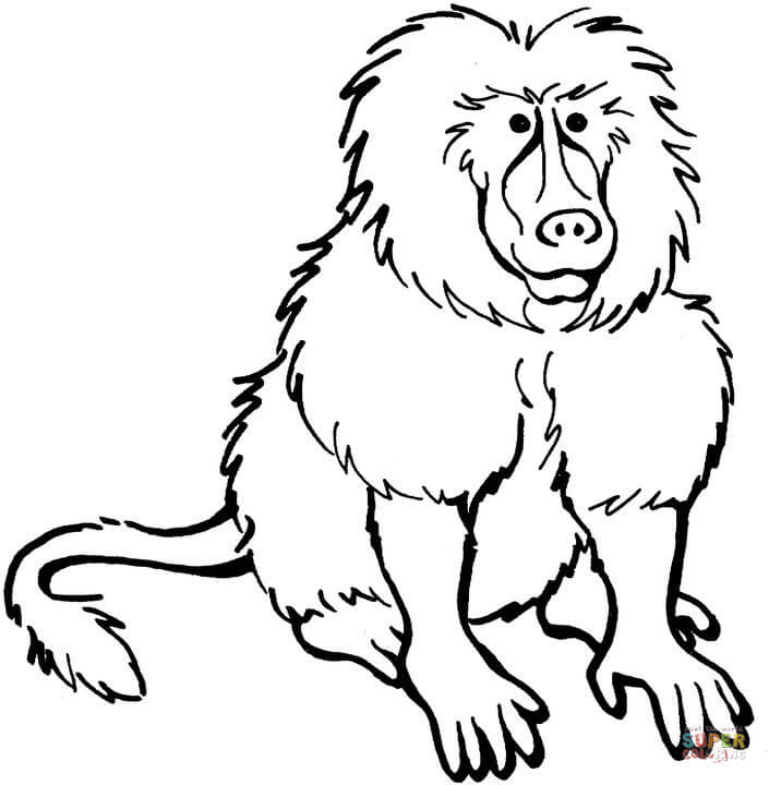 Baboon clipart black and white Free Coloring coloring page Printable