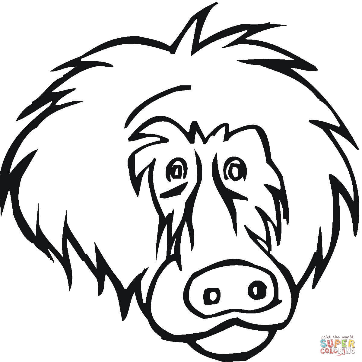 Baboon clipart face Face Printable the Face Coloring