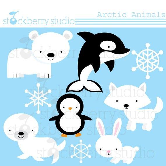 Baby Animal clipart arctic animal Cute best arctic 30 animal