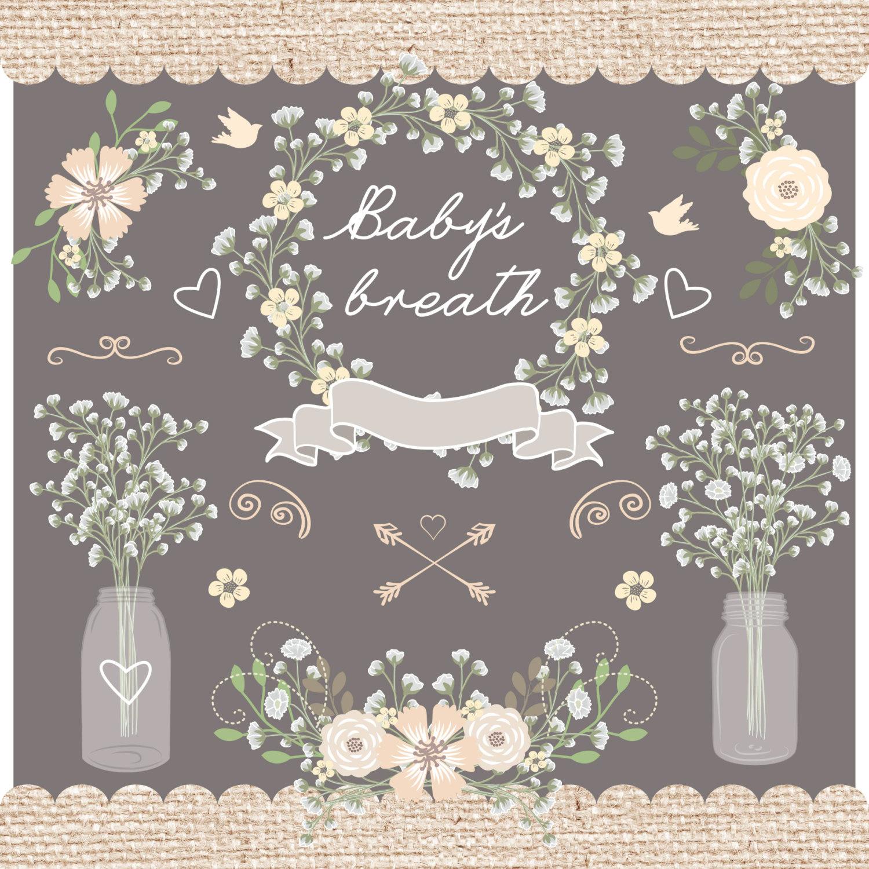 Baby's Breath clipart Baby's Vector wedding Rustic jar