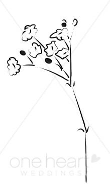 Baby's Breath clipart Elegant Breath Flower Clipart Sketches