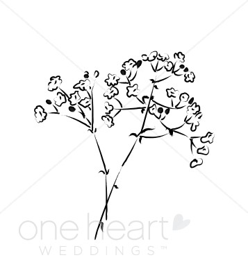 Baby's Breath clipart For Search Breath