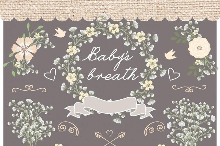 Baby's Breath clipart Jar wedding wedding jar Hand